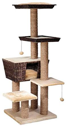 amazon arbre a chat