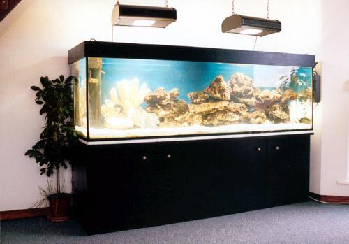 aquarium gros volume