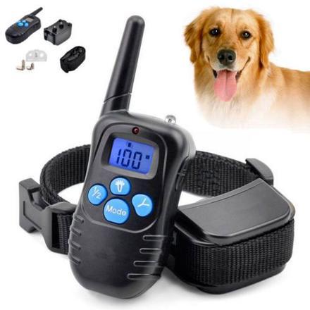 collier electrique pour chien pas cher