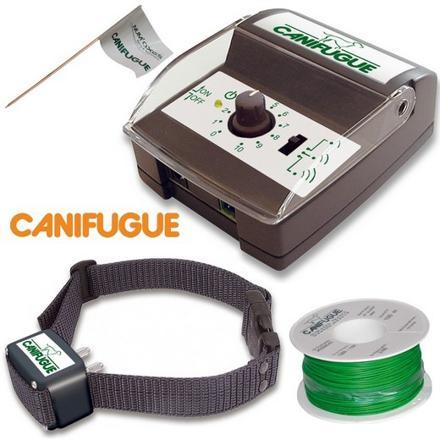 collier pour chien electrique anti fugue