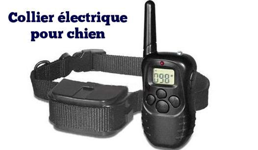 colliers electriques pour chiens