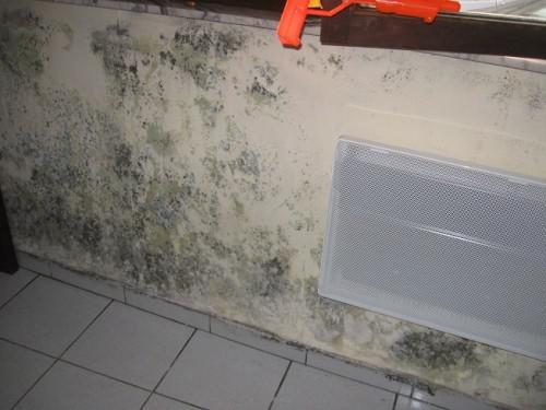 contre humidité mur