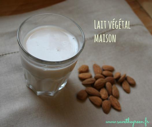 lait végétal maison