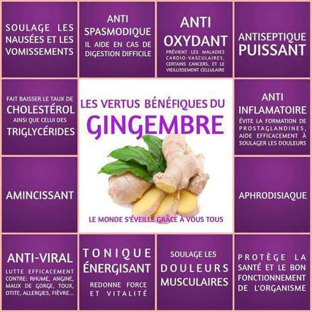 le bienfait du gingembre