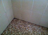 moisissure noire douche