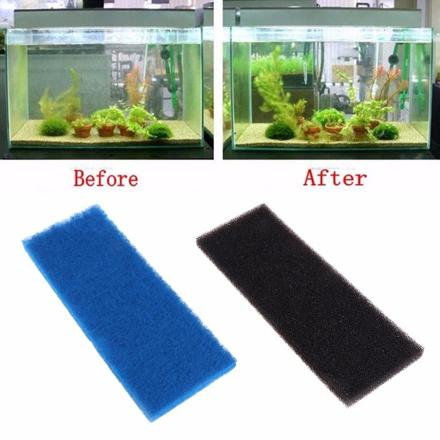 mousse de filtration aquarium