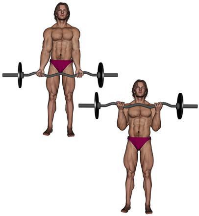 musculation avec barre