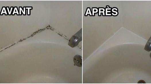 nettoyer la moisissure