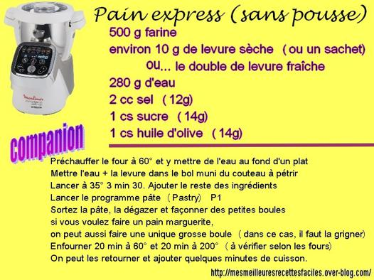 pain rapide companion