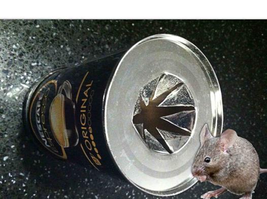 piege a rat efficace