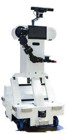 robot rose