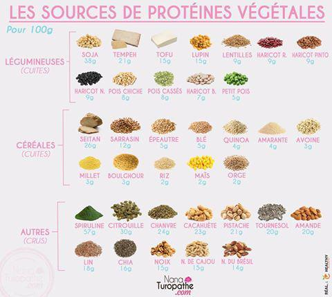 sources de protéines végétales