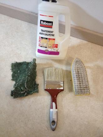 traitement moisissure mur