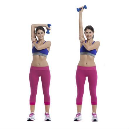 triceps haltère