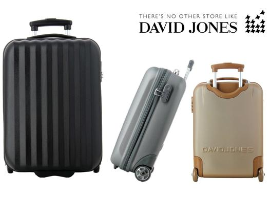 valise ryanair david jones